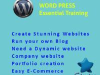 Website Design with Wordpress (Essential Training)
