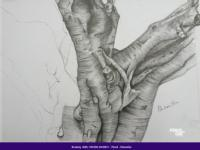 Learn Sketching With Pencil And Chai [Beginners]