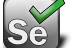 Professional training on Selenium Testing (Automation)