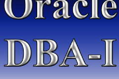 Professional Training on Oracle DBA