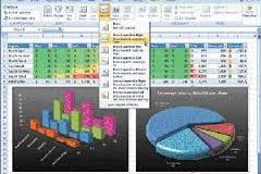 Master the art of reporting and data analysis with Microsoft Excel 2007