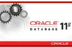 Oracle database Expert