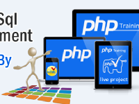 PHP MYSQL Development Training