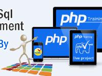 PHP MYSQL Development Training