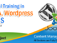 Joomla, Wordpress Live training