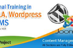 Joomla, Wordpress Live training