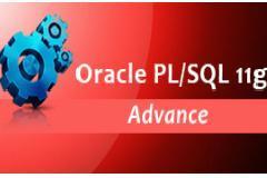 Oracle PL/SQL 11g – Advance