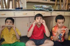 Curriculum Supporting Science Programs for Kids