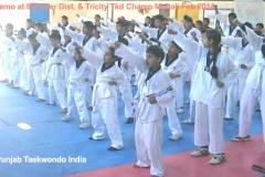 Martial Art Taekwondo Training Classes in Mohali near Chandigarh