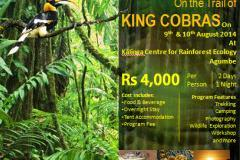Rainforest Escapade, On the Trails of King Cobras