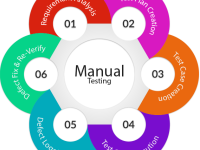Manual Software Testing Training on Live Projects