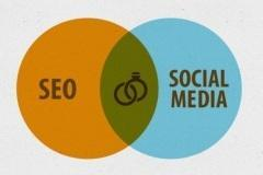 SEO Basic Course to Be an Expert at Online Marketing