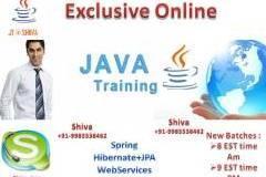 ExclusivJ ava/jee Online Training