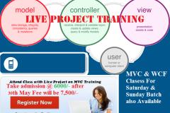 Microsoft ASP.NET MVC Training