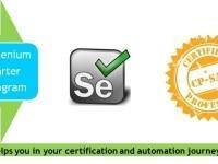 1 Day Selenium Training Starter program