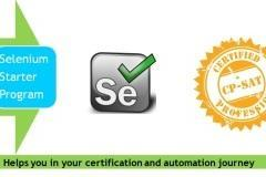 1 Day Selenium Training Starter program