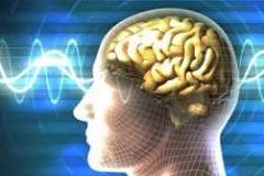 Mid Brain Activation Workshop