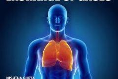 Complete Breathing & Exchange of Gases course for AIPMT/AIIMS/ Class 12 Board