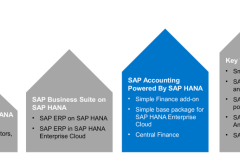 SAP SIMPLE FINANCE TRAINING PROGRAM