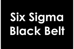 Six Sigma Black Belt Training