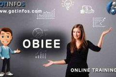 OBIEE | Online Training
