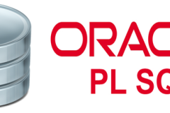 Oracle PL/SQL & Database Training with Performance Tuning