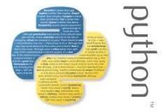 Master Python Programming Language