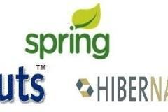 Framework Expert in Spring and Hibernate weekend batch
