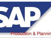 SAP-Production Planning Training