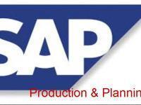 SAP-Production Planning Training