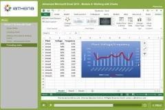 Microsoft Excel (Advanced)