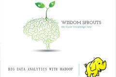 Big Data Analytics with Hadoop