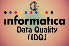 Informatica Data Quality v9.x Online Training