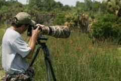 Wildlife Photography Courses by photography institute Ahmedabad