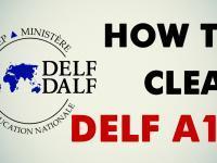 Online Delf A1