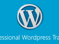 WordPress Training provided by Experienced Developer