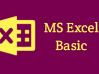 M.S Excel Basic