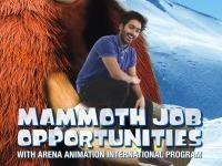 Arena Animation International Program