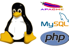 Web Developing course(Linux MySQL PHP)