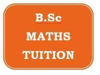 B.Sc Mathematics Tuition