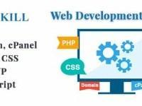 Web Development From Scratch