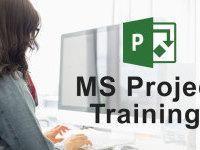 MS Project Training to Corporate in Chennai