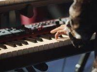 Performance and Pop Music Oriented Keyboard Training