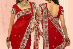 Elegant Saree Draping