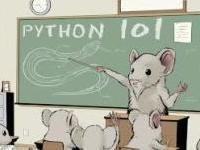 Python Manual 101 - A Comprehensive guide to Python