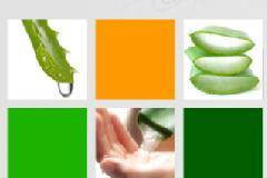 Aloe Miracle-Good health the Aloe way