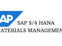 SAP S/4HANA - Delta in Procurement (MM) Training