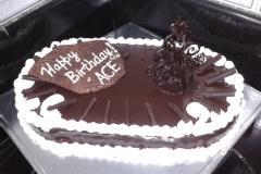 Chocolate Decoration For Cakes & Desserts.