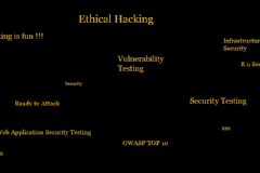 Computer Security,Hacking, Vulnerabilities,Training,Software,Web Application,Security Testing