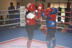 Thai boxing , Taekwondo, Kick boxing ,Judo Karate , Self defence
